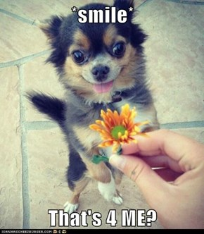 *smile*  That's 4 ME?