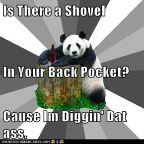 Is There a Shovel In Your Back Pocket? Cause Im Diggin' Dat ass.