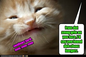 frum dat smug grin on yoo face, i'd say yoo found deh cheez burgerz.
