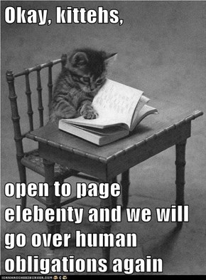 Okay, kittehs,   open to page elebenty and we will go over human obligations again