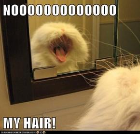 NOOOOOOOOOOOOO  MY HAIR!