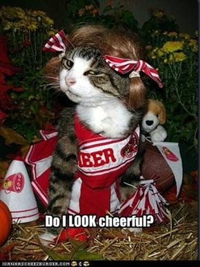 Do I LOOK cheerful?
