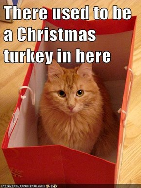 There used to be a Christmas turkey in here