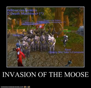 INVASION OF THE MOOSE