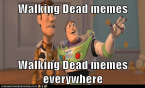 Walking Dead memes  Walking Dead memes everywhere