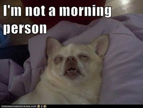 I'm not a morning person
