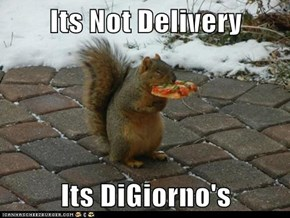 Its Not Delivery  Its DiGiorno's