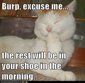Burp, excuse me...  the rest will be in your shoe in the morning.