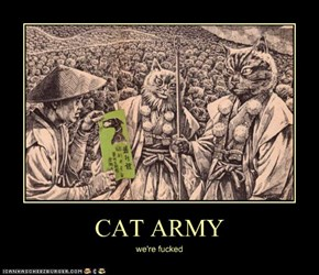 CAT ARMY