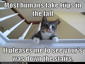 Most humans take trips in the fall  It pleases me to see your's was down the stairs.