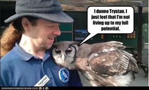 I dunno Trystan