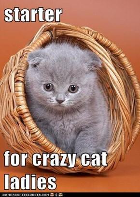 starter  for crazy cat ladies