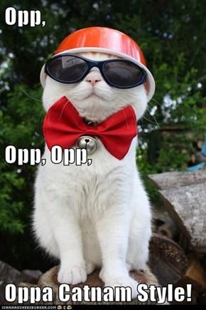 Opp, Opp, Opp, Oppa Catnam Style!