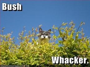 Bush  Whacker.