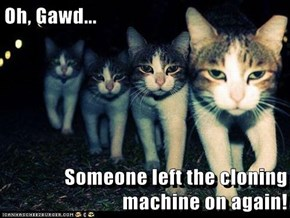 Oh, Gawd...  Someone left the cloning machine on again!