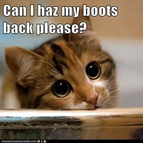 Can I haz my boots back please?