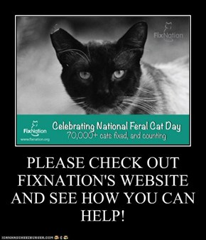 PLEASE CHECK OUT FIXNATION'S WEBSITE AND SEE HOW YOU CAN HELP!