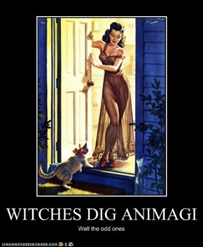 WITCHES DIG ANIMAGI