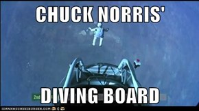 CHUCK NORRIS'  DIVING BOARD