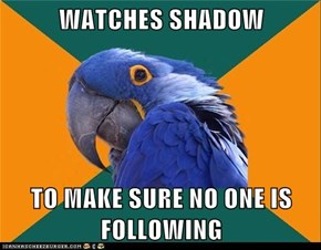 WATCHES SHADOW  TO MAKE SURE NO ONE IS FOLLOWING