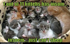 1 out of 11 kittehs has insom...  insoem... just can't sleep