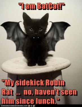 """I am BatCat!""  ""My sidekick Robin Rat  ...  no, haven't seen him since lunch."""
