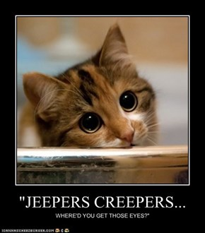 """JEEPERS CREEPERS..."