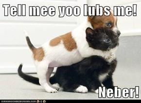 Tell mee yoo lubs me!   Neber!