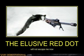 THE ELUSIVE RED DOT