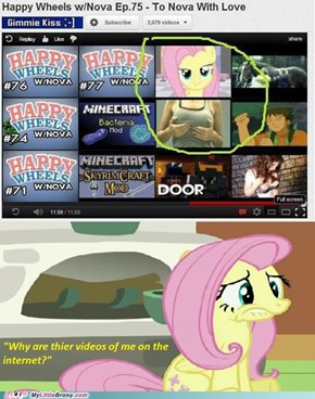 Did fluttershy give you her permission to do so?