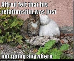 Alfred felt that his relationship was just  not going anywhere