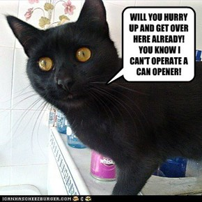 WILL YOU HURRY UP AND GET OVER HERE ALREADY!  YOU KNOW I CAN'T OPERATE A CAN OPENER!