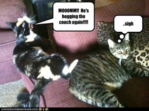 MOOOMM!!  He's hogging the couch again!!!!