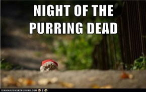 NIGHT OF THE            PURRING DEAD