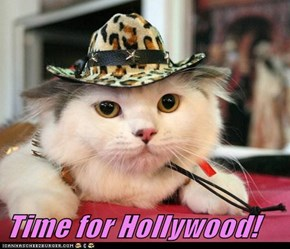 Time for Hollywood!