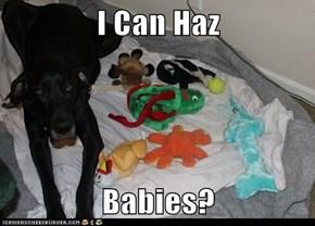 I Can Haz  Babies?