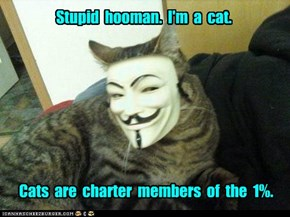 And hoomans are part of the 99%.
