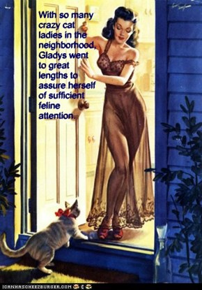 With so many crazy cat ladies in the neighborhood, Gladys went to great lengths to assure herself of sufficient feline attention.