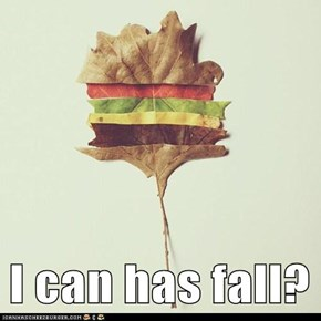 I can has fall?