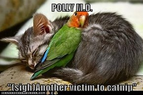 "POLLY M.D.  ""(sigh)Another victim to catnip"""
