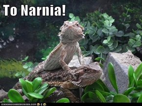 To Narnia!