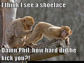 I think I see a shoelace  Damn Phil, how hard did he kick you?!