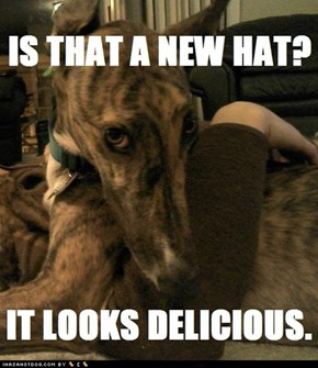 I can haz hat?