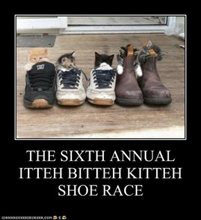THE SIXTH ANNUAL ITTEH BITTEH KITTEH SHOE RACE