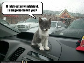 It's cold and wet out there!