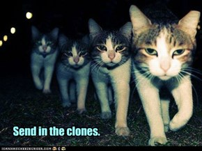 There ought to be clones.