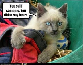 You said camping. You didn't say bears.