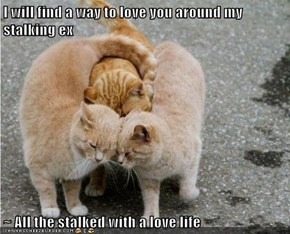I will find a way to love you around my stalking ex  ~ All the stalked with a love life