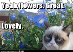 Yeah,flowers. Great. Lovely.