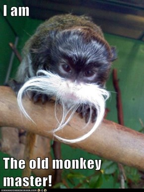 I am  The old monkey master!